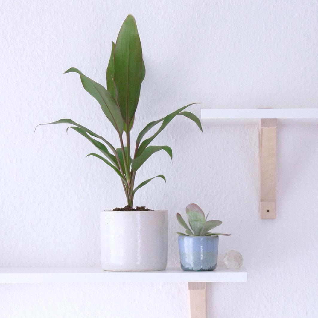 irma-heidi-keramik-pflanzentoepfe-b